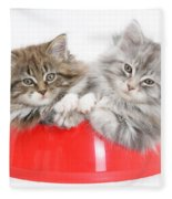 Kittens In A Food Bowl Fleece Blanket