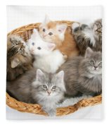 Kittens In Basket Fleece Blanket