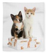Kittens On Birthday Package Fleece Blanket