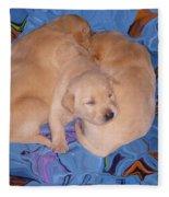 Lab Pups 2 Fleece Blanket