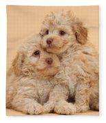 Labradoodle Puppies Fleece Blanket