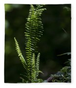 Lacy Wild Alabama Fern Fleece Blanket