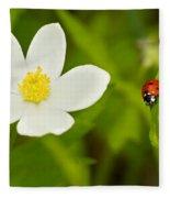 Ladybird Beetle Fleece Blanket