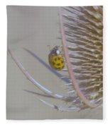 Ladybug Croosing The Prickles  Fleece Blanket