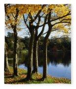 Lake And Trees, Mount Stewart, Co Down Fleece Blanket