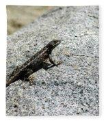 Lake Tahoe Lizard On A Hot Rock Fleece Blanket