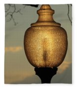 Lamp Light And Limb Fleece Blanket