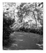 Lamps Of Central Park Fleece Blanket