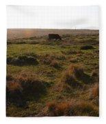 Landscape With Cow Grazing In The Field . 7d9935 Fleece Blanket