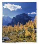 Larch Trees From The Saddleback Trail Fleece Blanket