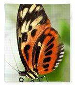 Large Tiger Butterfly Fleece Blanket