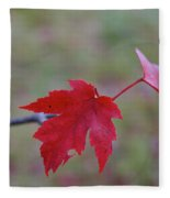 Last Leaves Fleece Blanket