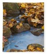 Last Signs Of Autumn 0438 Fleece Blanket