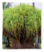 Lauhala Tree Fleece Blanket