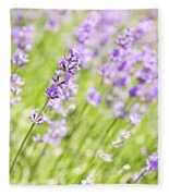 Lavender Blooming In A Garden Fleece Blanket