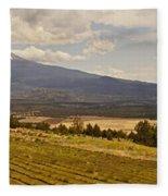 Lavender Farm Panorama Fleece Blanket