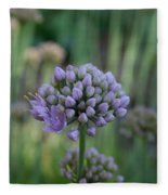 Lavender Flowering Onion Fleece Blanket