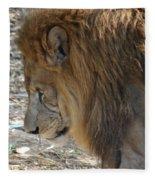 Le Lion Fleece Blanket