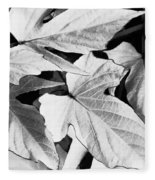 Leaf Study In Black And White Fleece Blanket