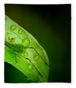 Leafhopper 2 Fleece Blanket