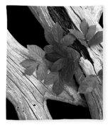 Leaves And Driftwood Bw Fleece Blanket