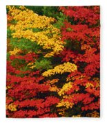 Leaves On Trees Changing Colour Fleece Blanket