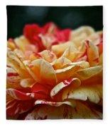Lemon Cherry Chip  Fleece Blanket