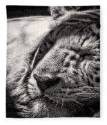 Let Sleeping Tiger Lie Fleece Blanket