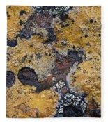 Lichen Pattern Series - 10 Fleece Blanket