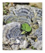 Lichen The Shamrock Fleece Blanket