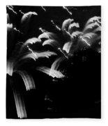 Licorice Sky Fleece Blanket