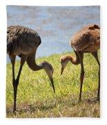 Life Lessons Fleece Blanket