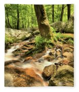 Life On The Rocks Fleece Blanket