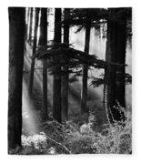 Light Through The Trees Fleece Blanket
