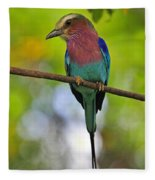 Lilac-breasted Roller Fleece Blanket