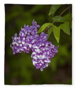 Lilac Flower Blossoms No. 319 Fleece Blanket