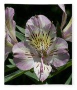 Lily - Liliaceae Fleece Blanket