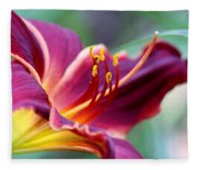 Lily - Hardy Fleece Blanket