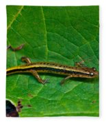 Lined Salamander 3 Fleece Blanket
