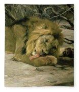 Lion Reclining In A Landscape Fleece Blanket