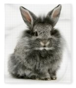 Lionhead Rabbit Fleece Blanket