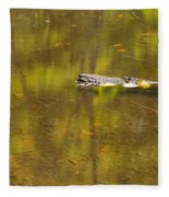 Little Carp River Bed 1 Fleece Blanket