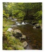 Little Carp River Falls 5 Fleece Blanket
