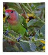 Little Lovebird Fleece Blanket
