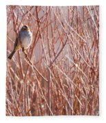 Little Sparrow Fleece Blanket
