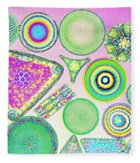 Lm Of Fossilized Diatoms Fleece Blanket