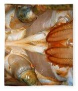 Lobster Male Sex Organs Fleece Blanket