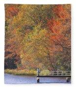 Locust Lake State Park 2968 Fleece Blanket