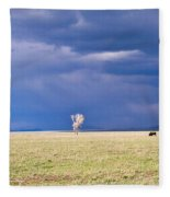Lone Buffalo 2 Fleece Blanket