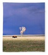 Lone Buffalo 4 Fleece Blanket
